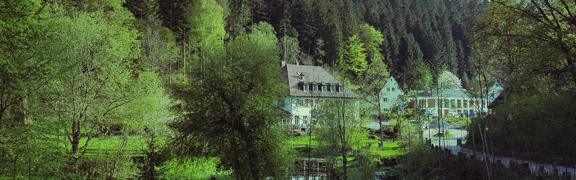 Außenanlage Gut-Lauterbad Hotel Freudenstadt
